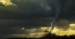 Tornado or Extreme Storm - Natural Disaster Business Survival Series